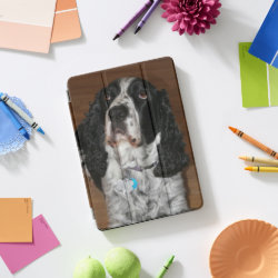 Apple 10.5' iPad Pro Cover with Springer Spaniel Phone Cases design