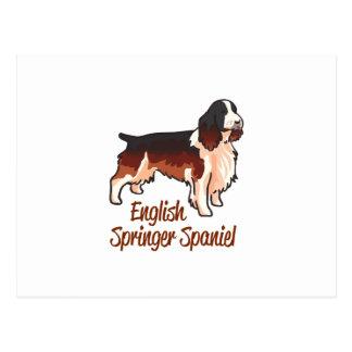English Springer Spaniel Postcard