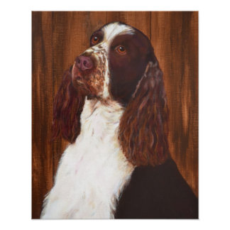 English Springer Spaniel Posters