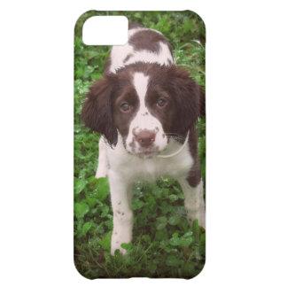 English Springer Spaniel Puppy iPhone 5C Case