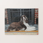 """English Springer Spaniel Puzzle<br><div class=""""desc"""">This is a puzzle featuring an original photograph of a beautiful liver and white English Springer Spaniel lying in front of a fireplace.</div>"""