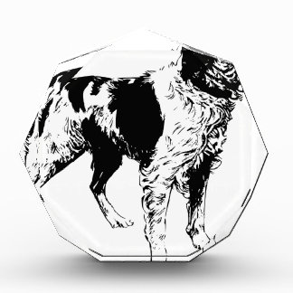 English Springer Spaniel  Sporting Pets Dogs Acrylic Award