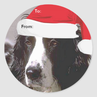 English Springer Spaniel To/From Xmas stickers
