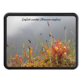 English Sundew Tow Hitch Cover
