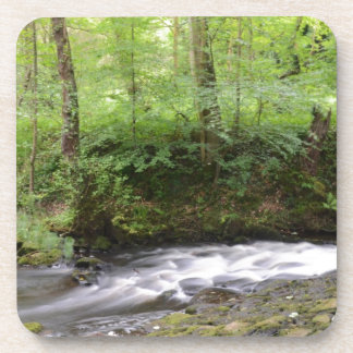 English Woodland Stream Coasters