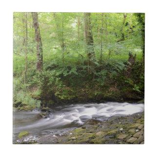 English Woodland Stream Ceramic Tile