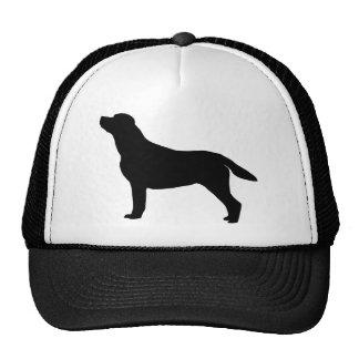 Engranaje del labrador retriever gorras