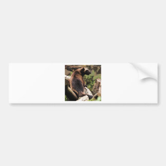 Engraved Wolverine Bumper Sticker