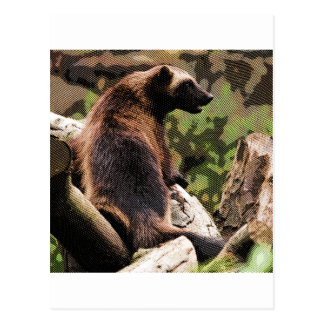 Engraved Wolverine Postcard