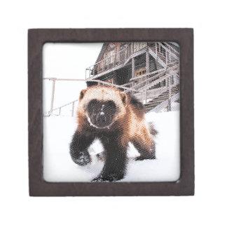 Engraved Wolverine Premium Trinket Boxes