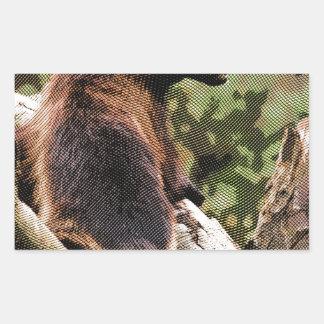 Engraved Wolverine Rectangular Sticker