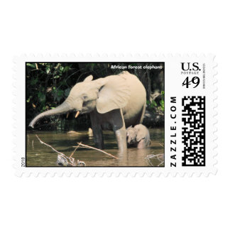 (enhanced) African forest elephants, Congo Postage