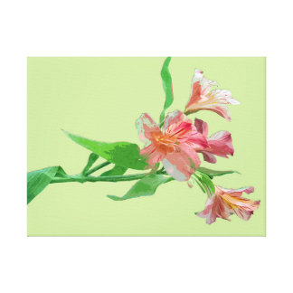 Enhanced Azaleas Wrapped Canvas Print
