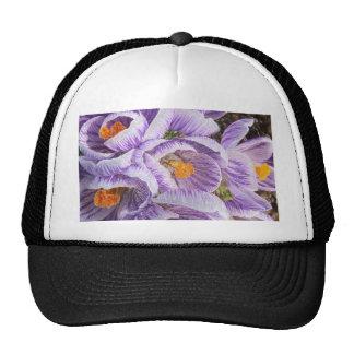 Enhanced Crocus Trucker Hat