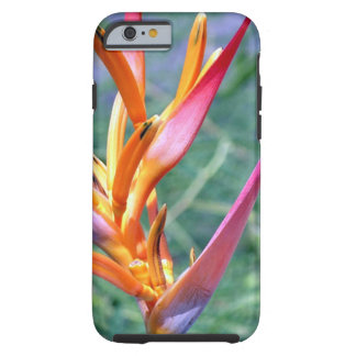 Enhanced Heliconia Flower Tough iPhone 6 Case