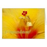 Enhorabuena amarilla del hibisco tarjetón