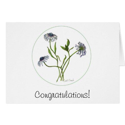 Enhorabuena de la margarita africana tarjeta