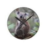 Enhorabuena de la selva del safari del oso de koal reloj de pared