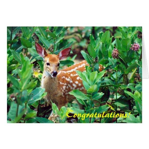 Enhorabuena del cervatillo de los ciervos tarjetas