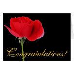 Enhorabuena del rosa rojo felicitación