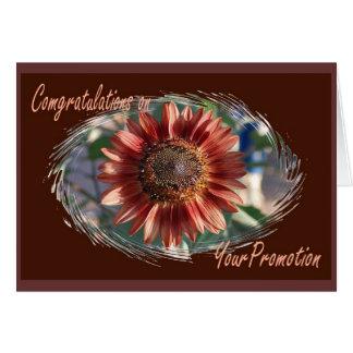 Enhorabuena en su tarjeta de la promoción