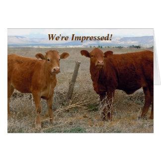 Enhorabuena - humor animal de la vaca roja - tarjeta de felicitación