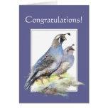Enhorabuena para los pájaros de las codornices de  tarjeton