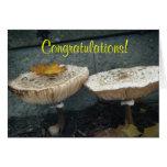 ¡Enhorabuena! Tarjeta de la seta