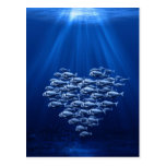enjambre de los pescados bajo corazón del agua postal
