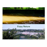 Enjoy Nature Walk Postcard