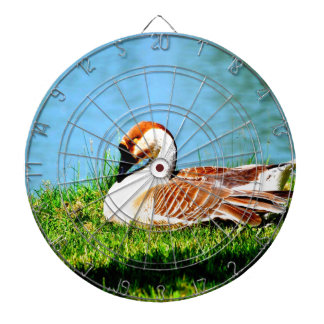 Enjoy peace of mind with you dartboard with darts