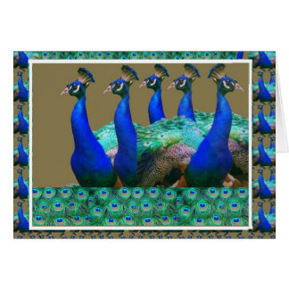 Enjoy:  PEaCOCK n Feathers Art Graphics Greeting Card