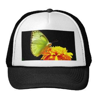 Enjoy sweet and peace butterfly trucker hat