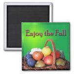 Enjoy the Fall Magnet