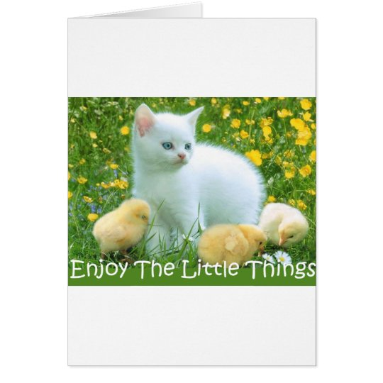 Enjoy The Little Things Cute Animals Card