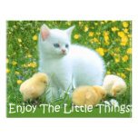 Enjoy The Little Things Cute Animals Custom Invite