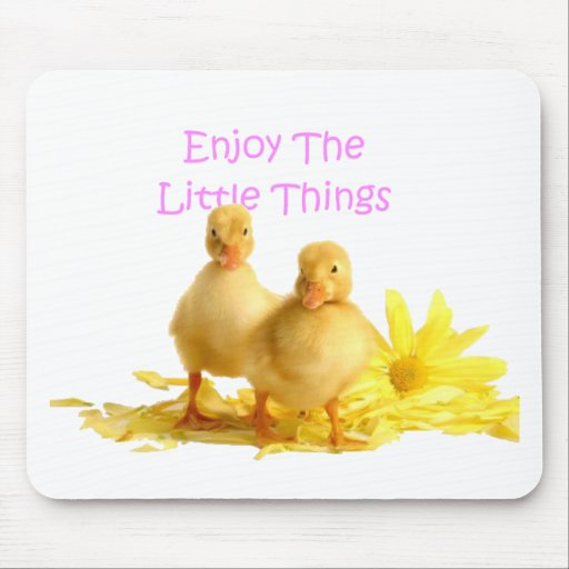 Enjoy The Little Things, Ducklings Mousepads