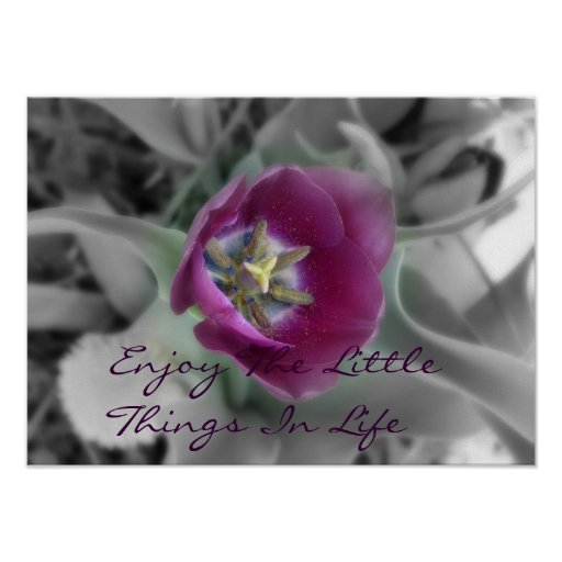 Enjoy The Little Things In Life Poster