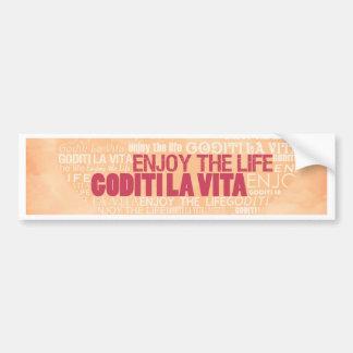 Enjoy The Love Multi Language Bumper Sticker