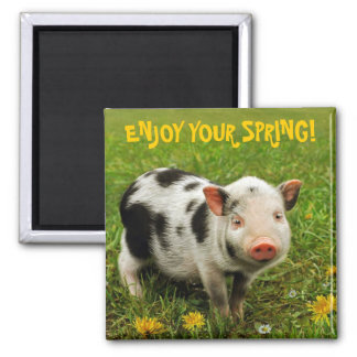 ENJOY YOUR SPRING! 2 INCH SQUARE MAGNET