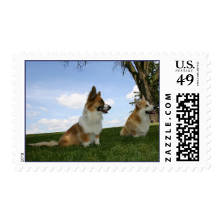 Enjoying a Summer Day Postage