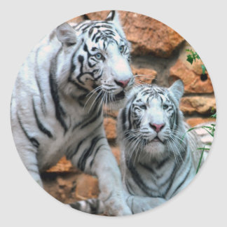 Enjoying peace and love Haifa White Tigers Classic Round Sticker