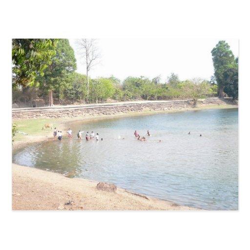 Enjoying the summer swimming postcard
