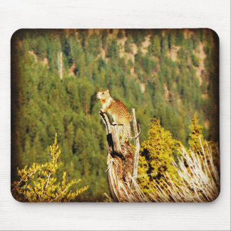 """Enjoying the View"" Squirrel Mouse Pad"
