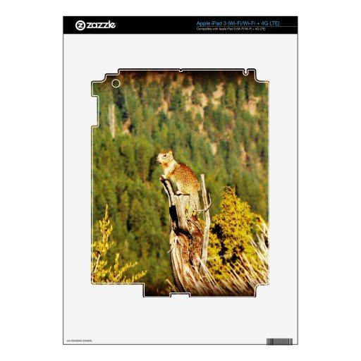 """""""Enjoying the View"""" Squirrel Skins For iPad 3"""