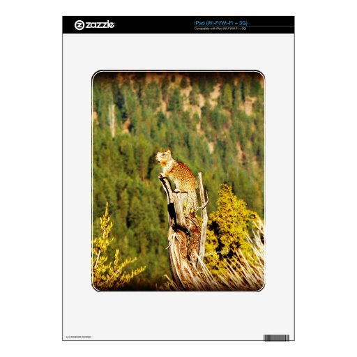 """""""Enjoying the View"""" Squirrel Skins For iPad"""