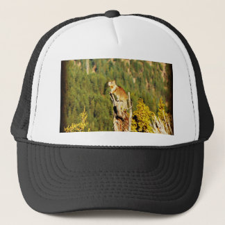 """Enjoying the View"" Squirrel Trucker Hat"
