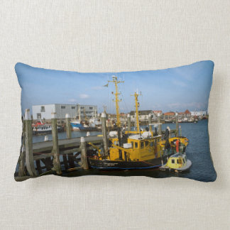 Enkhuizen, modern port vessels and facilities pillow