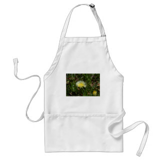 Enlarged By Photography Aprons