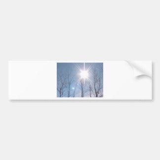 Enlightened Bumper Sticker